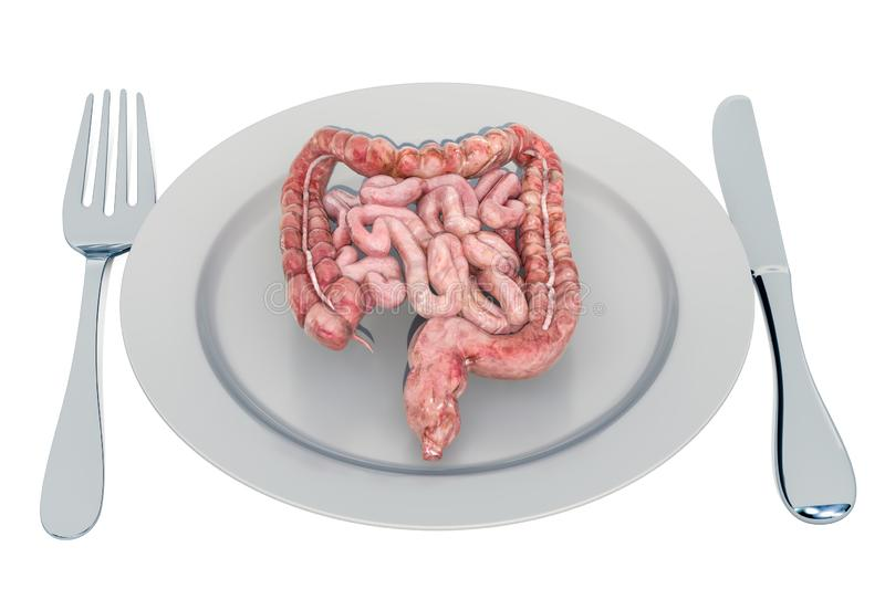 Diet for a healthy digestive system and gastrointestinal tract concept, 3D rendering. Isolated on white background stock illustration