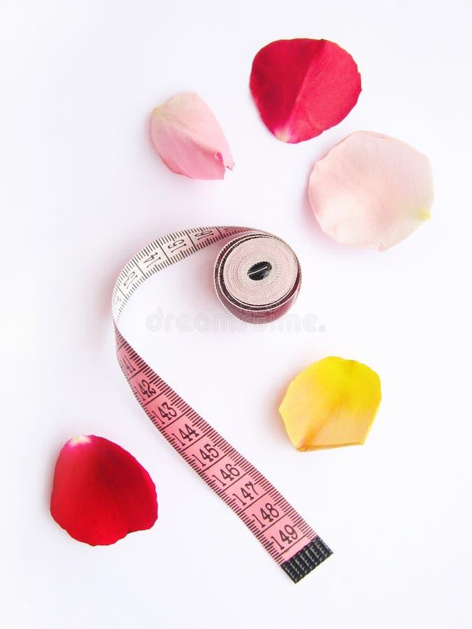 Download Diet Massband Petals Lose Weight Stock Photo - Image: 6072734