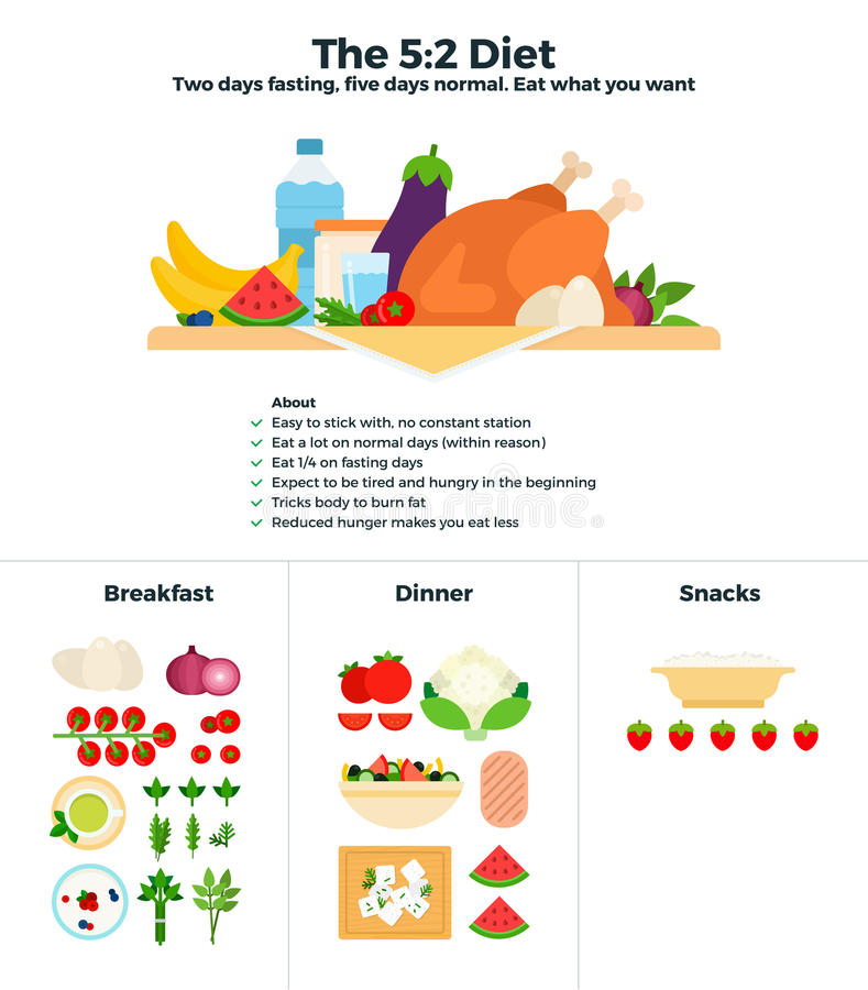The 5-2 diet recomendations vector illustration