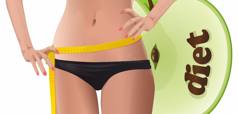 Dieta ilustración del vector