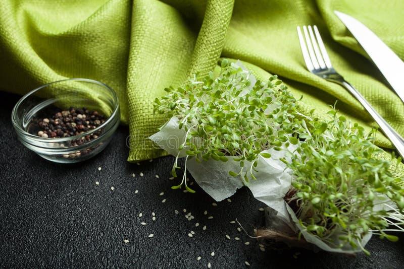 Dieta baja en calorías de micro-verde fresco para una mejor digestión fotografía de archivo