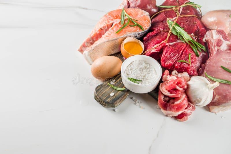 Dieta białkowa Carnivore zdjęcia stock