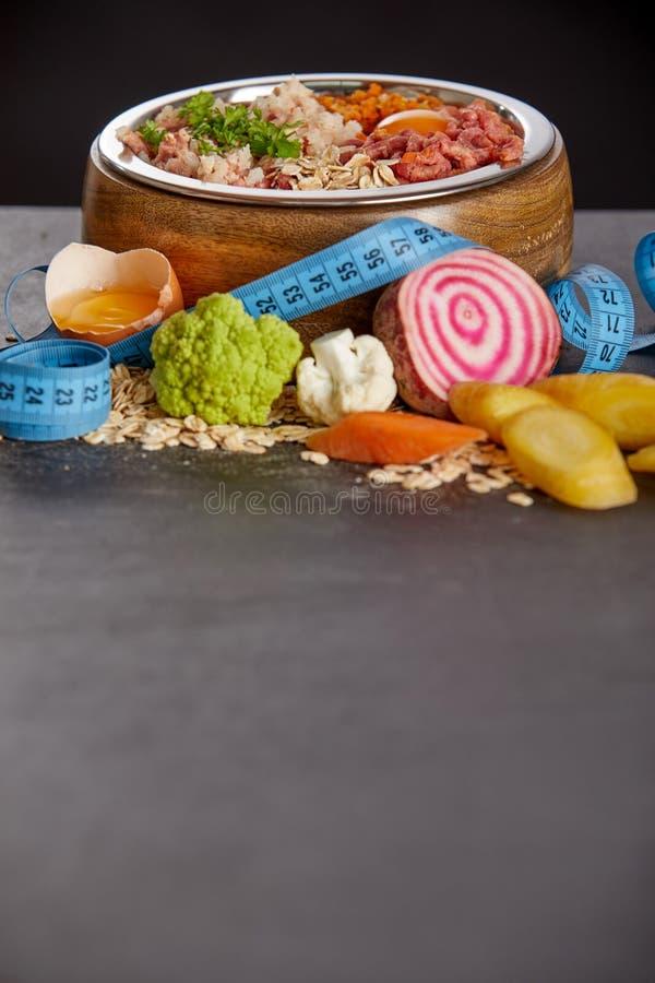 Dieta da refeição de BARF para animais de estimação Copie o espa?o imagem de stock royalty free