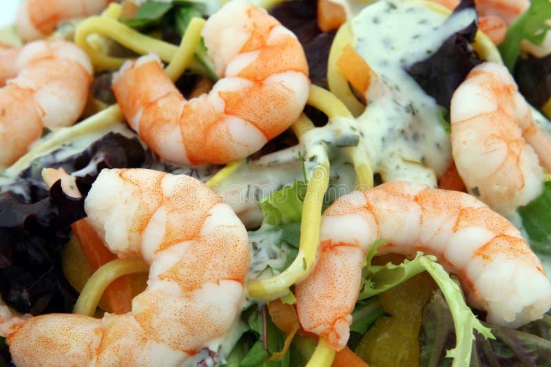 Dieta de alimento saudável da salada do macarronete e do camarão imagem de stock royalty free