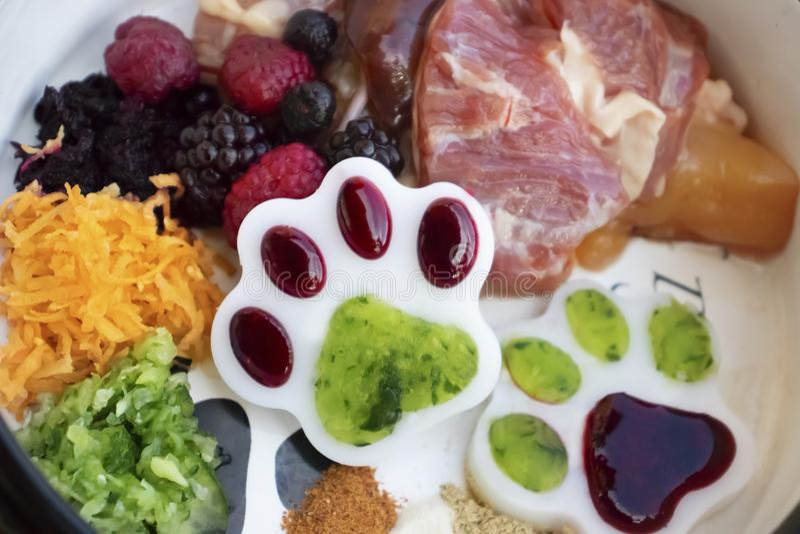 Dieta de Barf, alimento natural para o cão e gato fotografia de stock royalty free