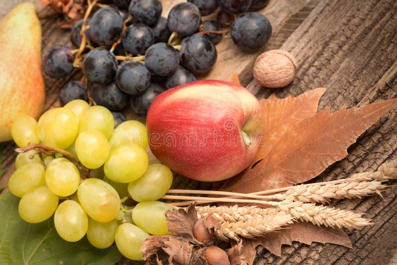 Dieta de Healty & x28; food& x29; - Fruto sazonal orgânico fresco do outono fotos de stock