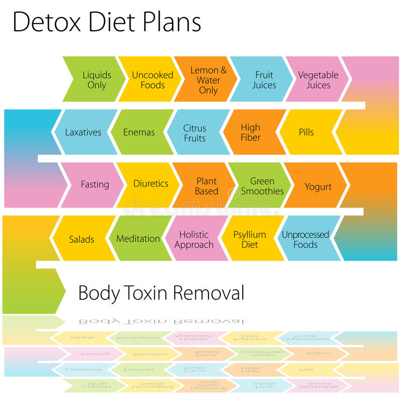 A dieta do Detox planeia a carta ilustração do vetor