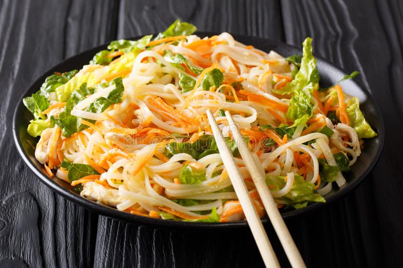 Dietary salad with rice noodles, chicken breast, carrot and greens close-up. horizontal stock photos