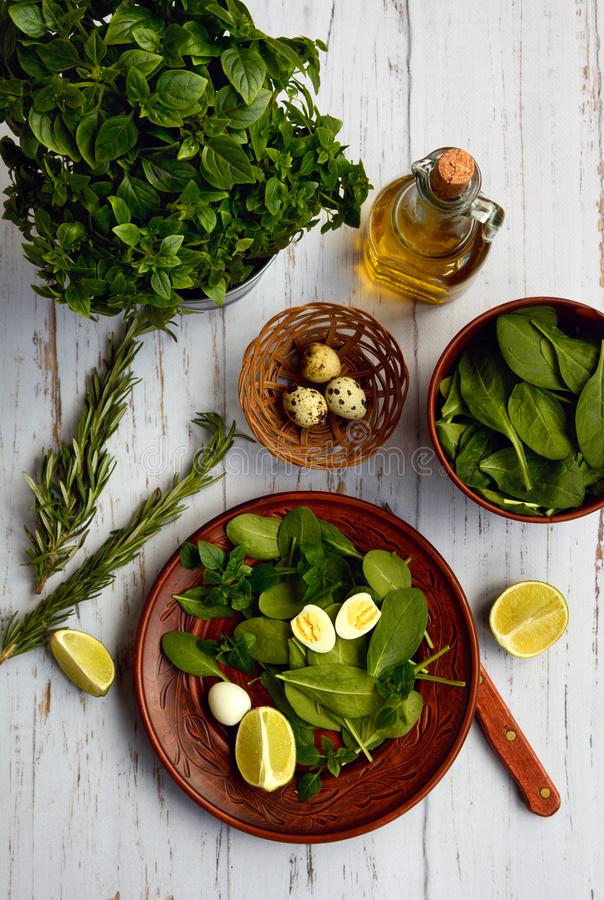 Dietary salad of spinach and quail eggs on a ceramic plate, rosemary, a bottle of olive oil, a bunch of basil and lime on a white royalty free stock image