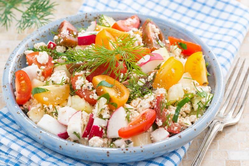 Dietetyczny jedzenie - świeża sałatka z warzywami i chałupa serem zdjęcie stock