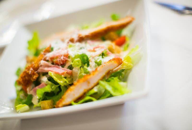 Dietic Caesar sałatka obraz stock
