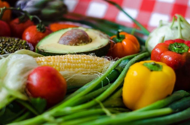 Dietic jedzenie, różnorodność odżywczy warzywa, lato świezi składniki dla polewki zdjęcie royalty free