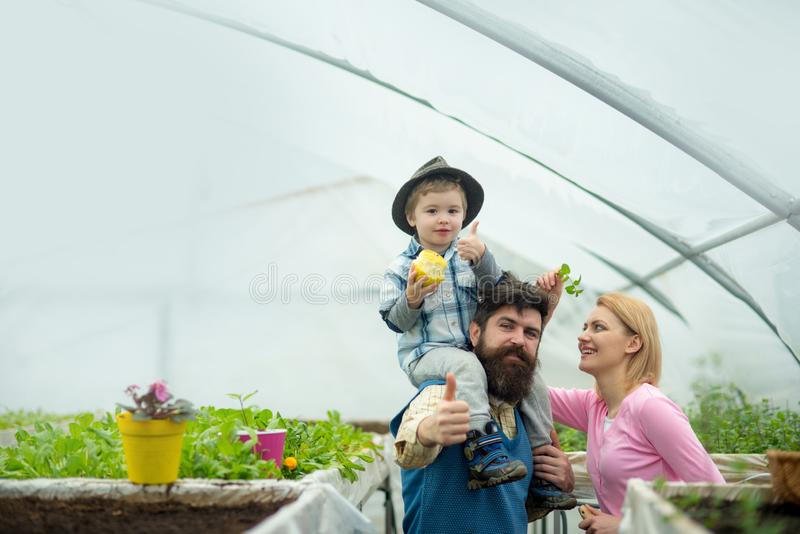 Dieting. dietingand healthy food. dieting with organig eating. dieting concept. family with potted plant. stock image