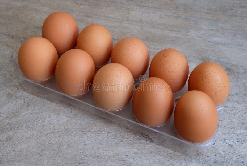 Diez huevos fotos de archivo libres de regalías