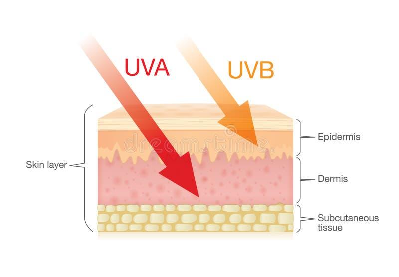 A diferença da radiação datilografa dentro a luz solar com pele ilustração royalty free
