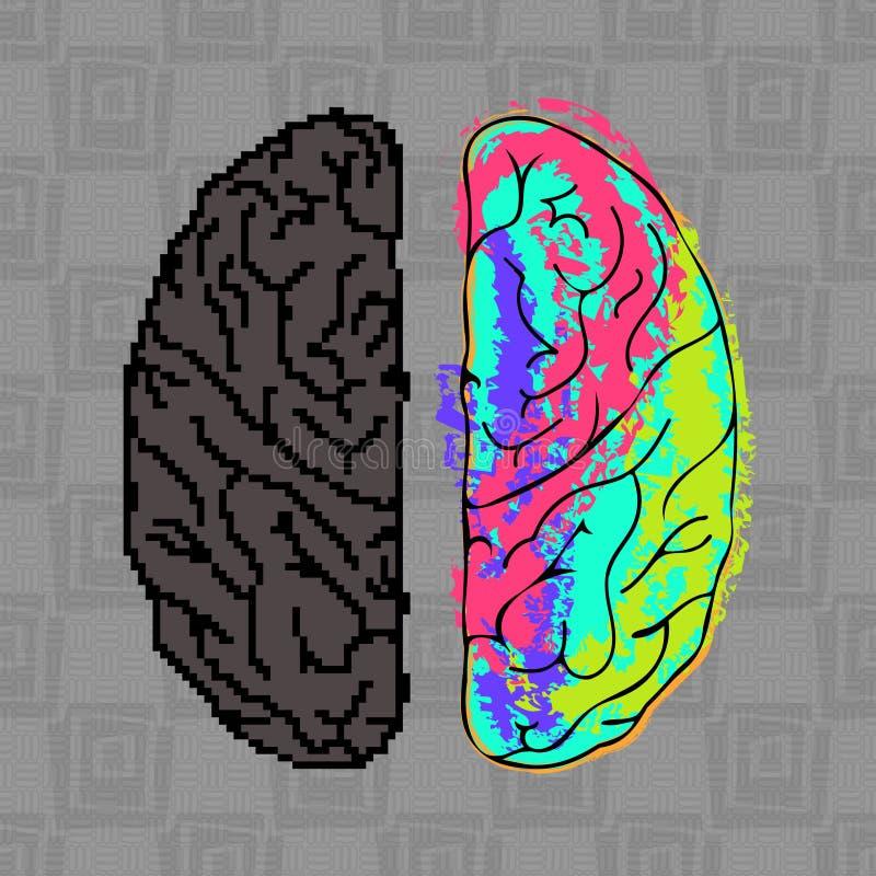 Diferencias entre los hemisferios del cerebro ilustración del vector