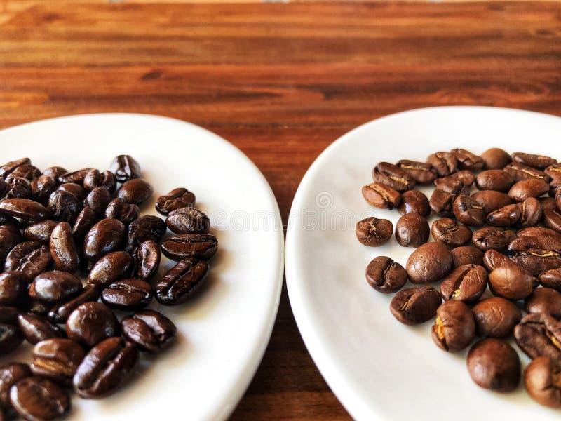 Diferente de las carnes asadas de los granos de café Granos de café de la carne asada fotografía de archivo