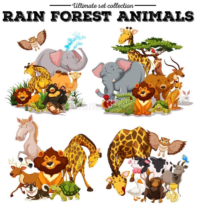 Diferente tipo de animales de la selva tropical stock de ilustración