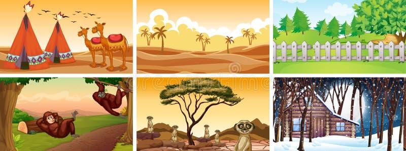 Diferentes escenas con animales y naturaleza imagen de archivo libre de regalías