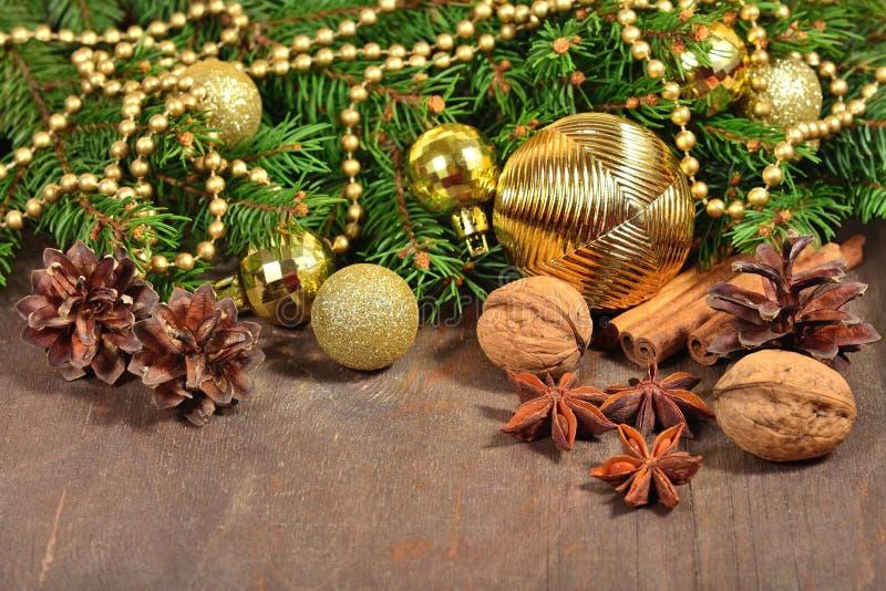 Diferentes tipos de especias, de nueces y de conos, decoraciones de la Navidad imágenes de archivo libres de regalías