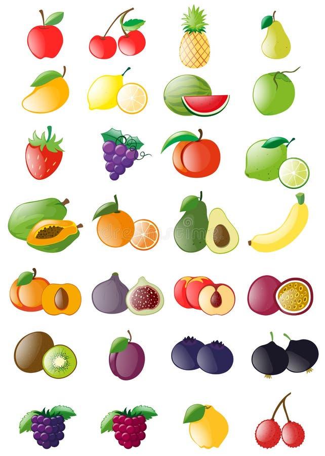 Diferentes tipos de frutas frescas ilustración del vector