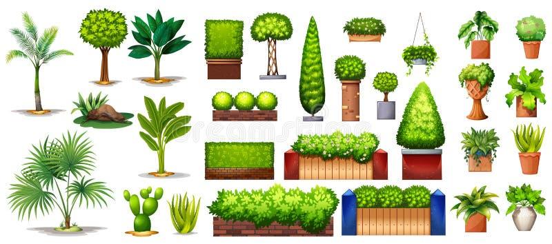 Différentes espèces d'usines illustration de vecteur