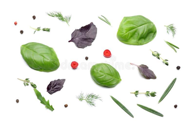 Différentes herbes et épices sur le fond blanc photo libre de droits