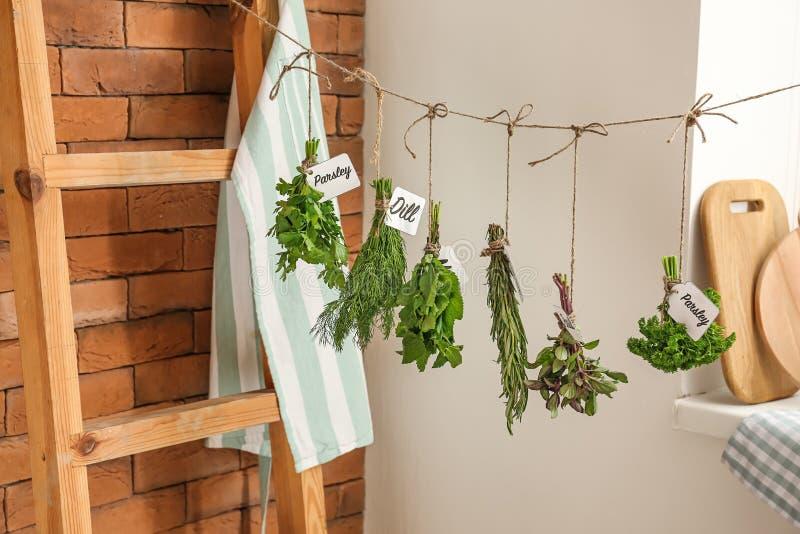 Différentes herbes fraîches accrochant sur la ficelle à l'intérieur photo libre de droits