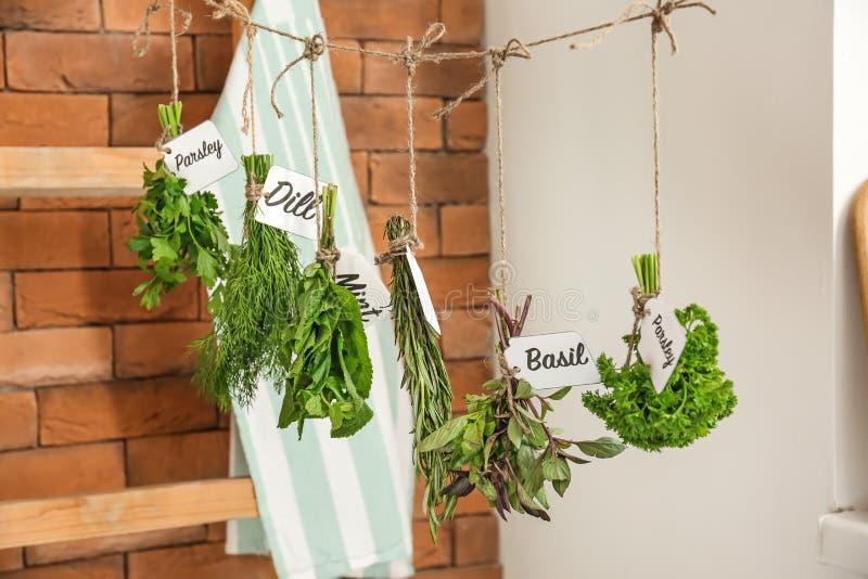 Différentes herbes fraîches accrochant sur la ficelle à l'intérieur photographie stock