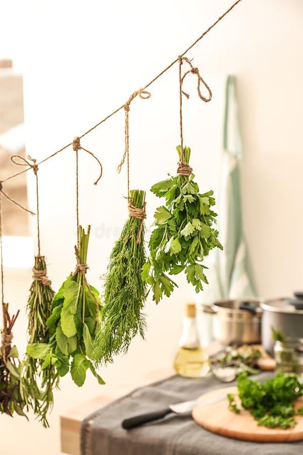 Différentes herbes fraîches accrochant sur la ficelle à l'intérieur photos libres de droits