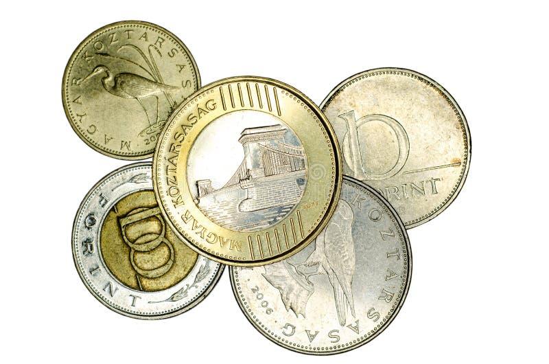 Différentes pièces de monnaie hongroises de forint image libre de droits