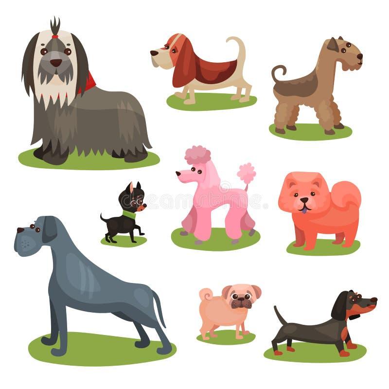 Différentes races d'ensemble de chien, illustrations colorées d'amis humains de race velus illustration stock