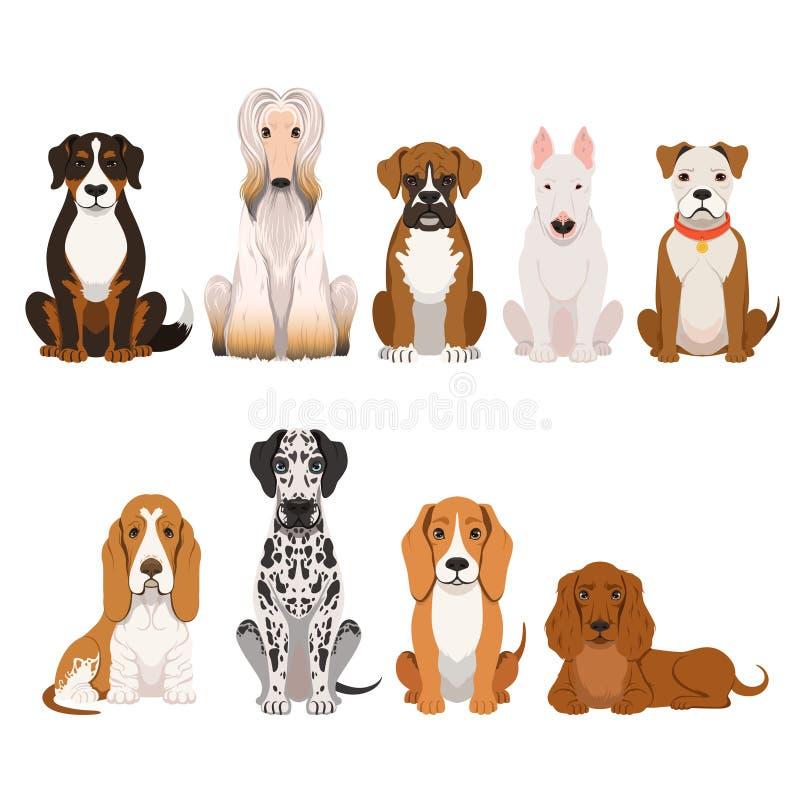 Différentes races de chien Groupe d'animaux domestiques dans le style de bande dessinée Illustrations de vecteur réglées illustration de vecteur