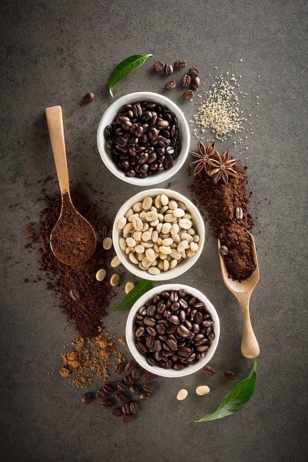 Différentes variétés de grains de café avec du sucre et la feuille verte dessus photo stock