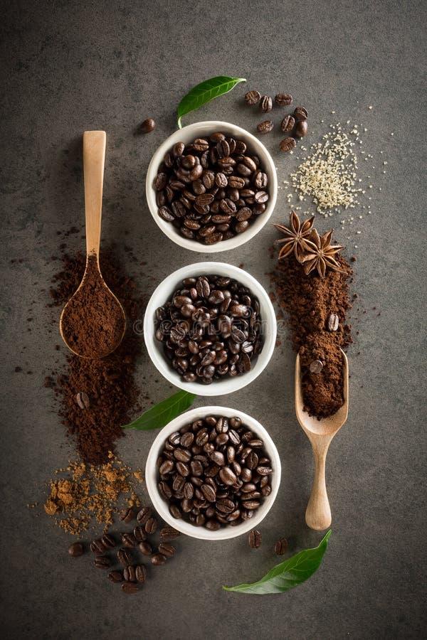 Différentes variétés de grains de café avec du sucre et la feuille verte dessus image stock
