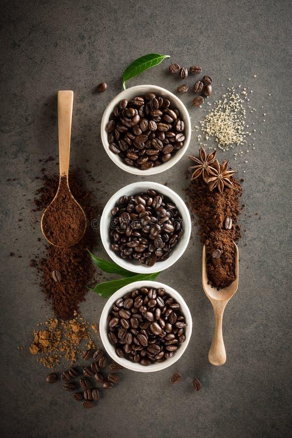 Différentes variétés de grains de café avec du sucre et la feuille verte dessus image libre de droits