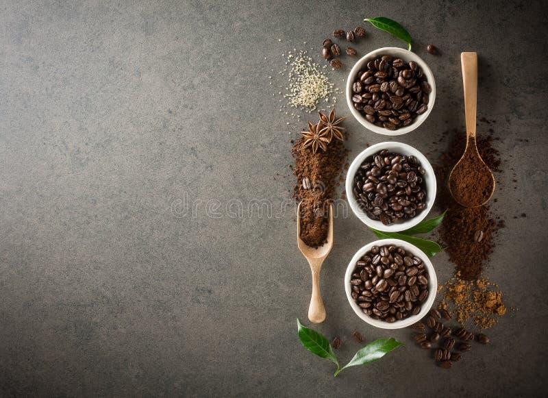 Différentes variétés de grains de café avec du sucre et la feuille verte dessus photographie stock libre de droits