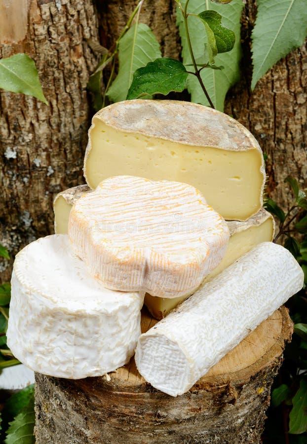 Différents fromages français photo libre de droits