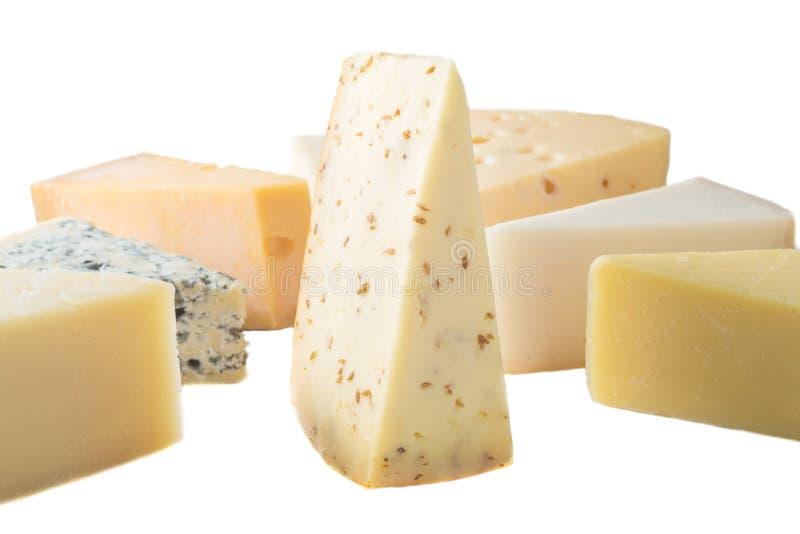 Différents genres de fromages d'isolement sur le fond blanc image stock