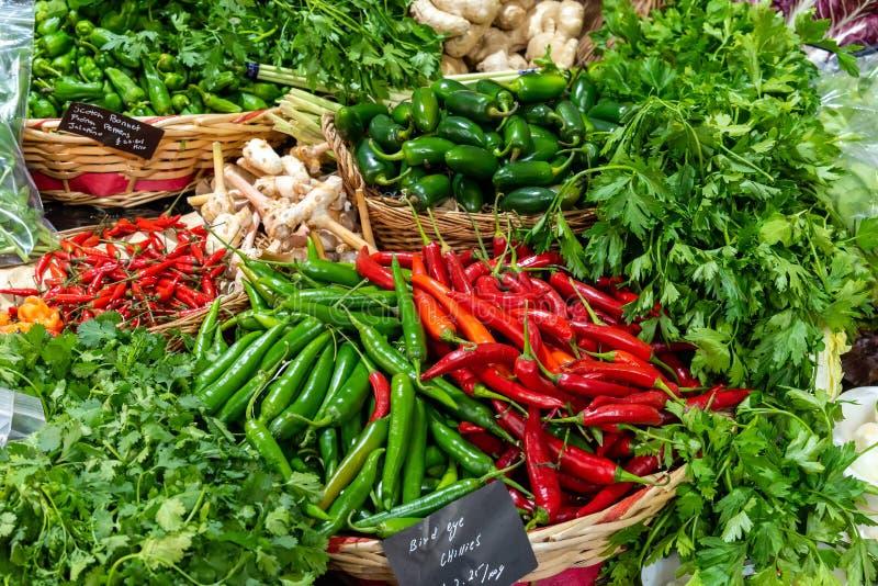 Différents genres de piments et d'herbes images stock