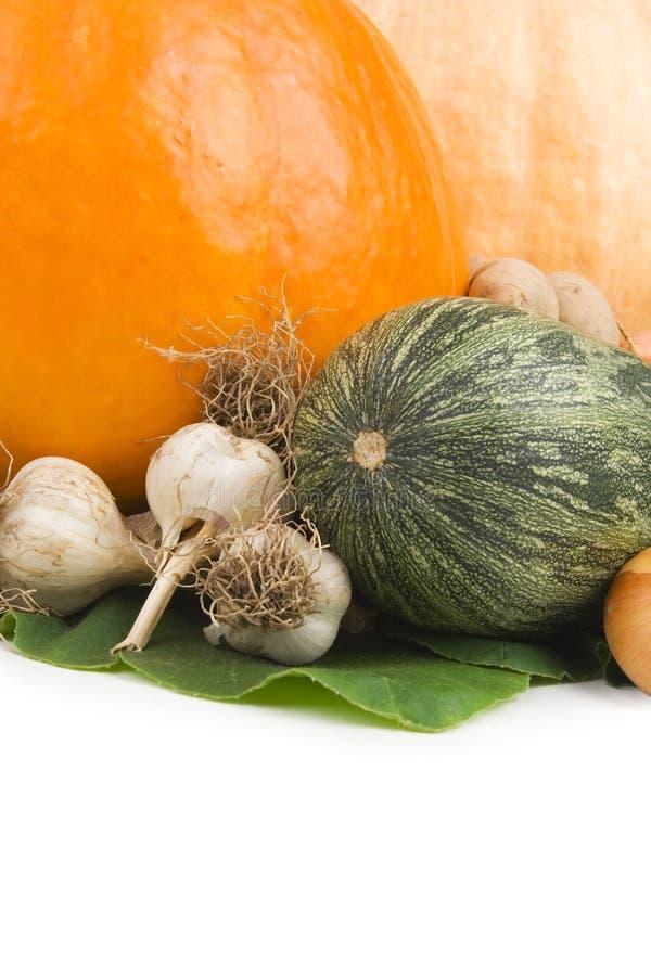 Différents légumes d'automne. image stock