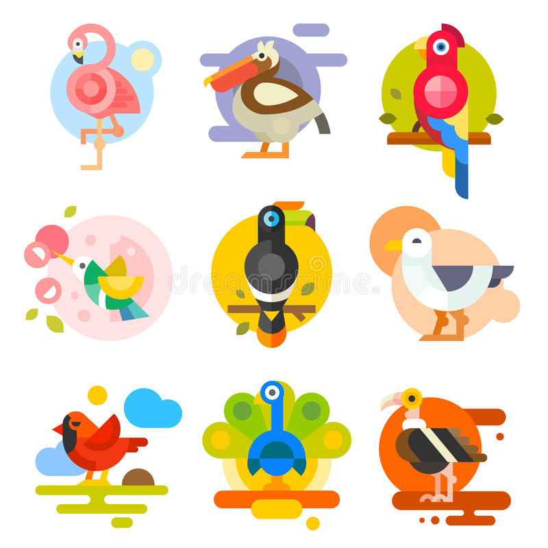 Différents oiseaux photos stock