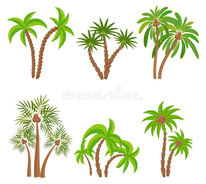 Différents palmiers réglés d'isolement sur le fond blanc Illustration de vecteur de plantes tropicales Usines de jungle de forêt  illustration libre de droits