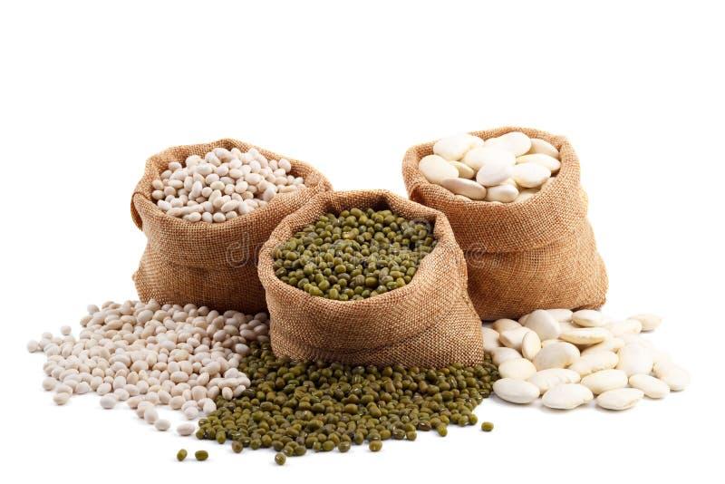 Différents types de haricots image stock