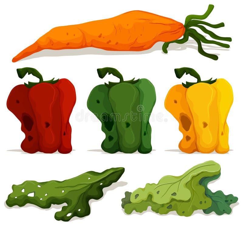 Différents types de légumes putréfiés illustration stock