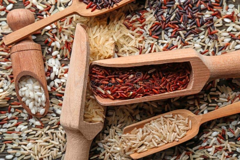 Différents types de riz dans des scoops sur la table en bois image libre de droits