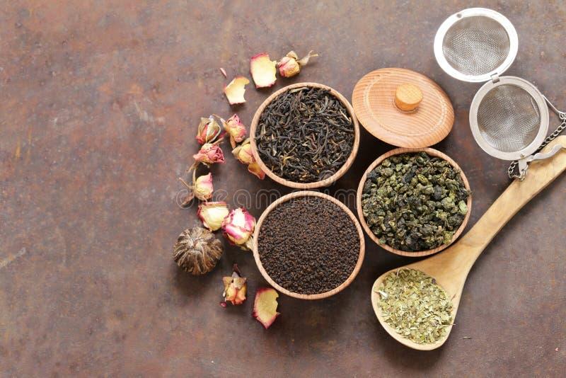 Différents types de thé images libres de droits