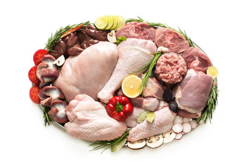 Diff?rents types de viande de dinde et de poulet, biftecks image libre de droits