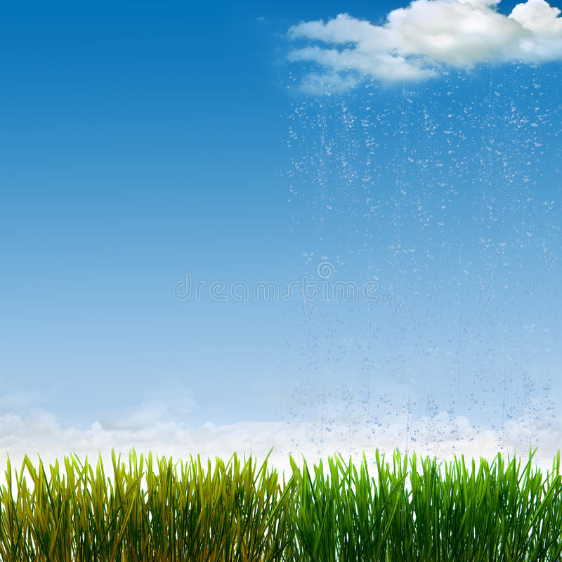 The difference. Between the grass watered and not watered stock photos