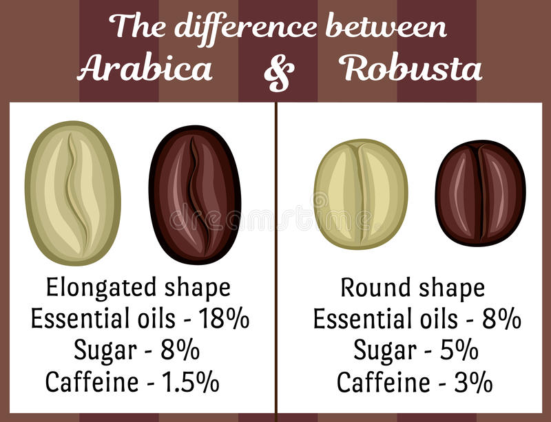 Image result for DIFFERENCES BETWEEN ROBUSTA and ARABICA COFFEE